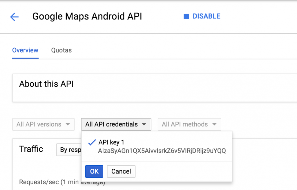 Implementing Native Google Maps in an Ionic Application
