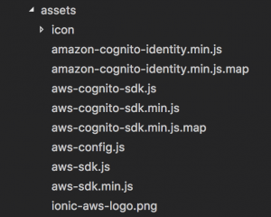 Ionic Aws stack assets folder